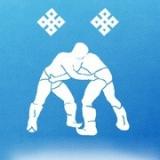 Районный турнир по бурятской борьбе, посвященный Сагаалган – 2017